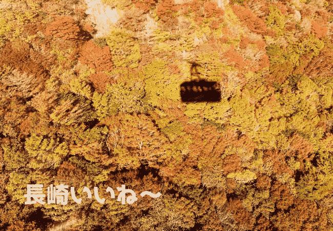 雲仙ロープウェイのゴンドラの影が山肌に映るのがかわいい